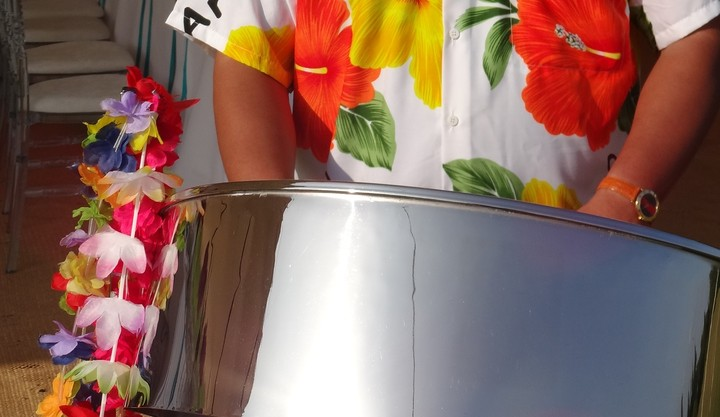 Steel band for garden party Windsor, Steel band for hire Weybridge, Steel band for garden party Sevenoaks, call 0208 421 2987, live band for garden party,