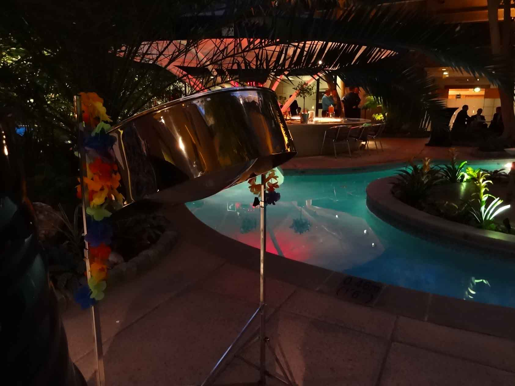 Music for Christmas party, band for Christmas party London, Christmas party ideas, band for Caribbean/Hawaiian party,